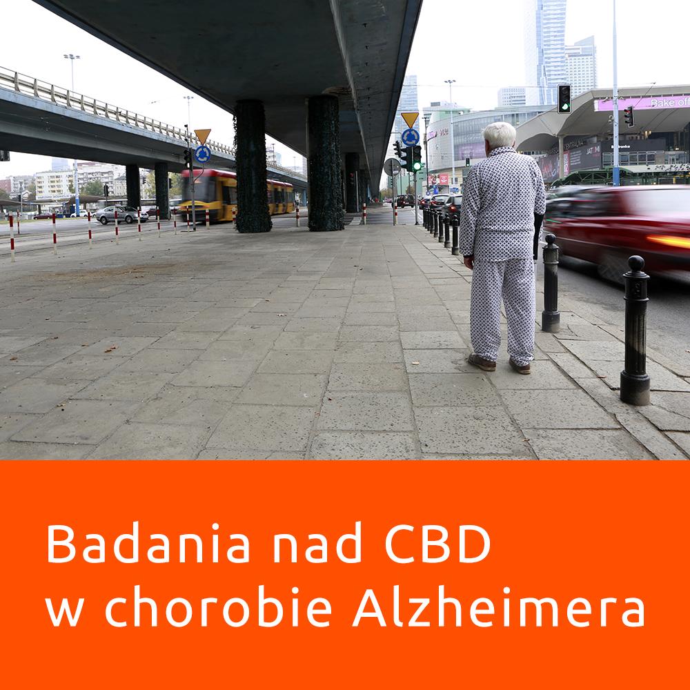 badania nad CBD w chorobie Alzheimera