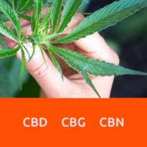 Skład olejków CBD CBG CBN