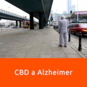 CBD w walce z alzheimerem